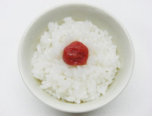 Can Chickens Eat Rice, Raw  or Cooked