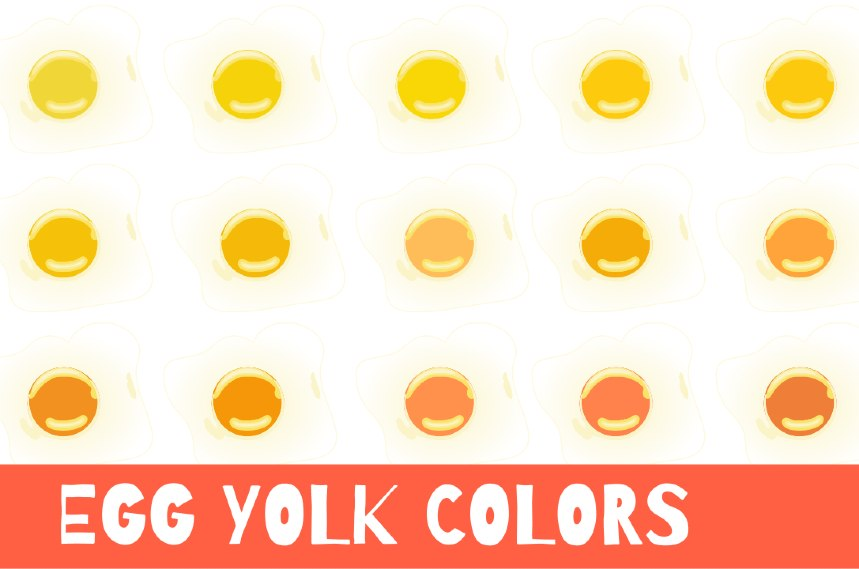 egg yolk color and chart
